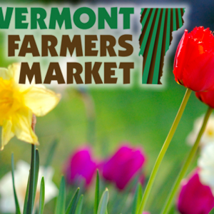 Vermont Farmers Market Flowers Rutland VT (3)