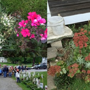 Tinmouth Plant Sale1