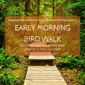 Early morning bird walk