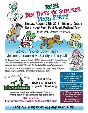 Rutland County Humane Society Dog Days Of Summer Pool Party Rutland Region Chamber Of Commerce